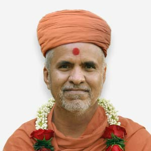 HH Swamishri